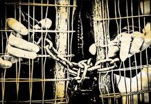 Representational image: Arindam Mukherjee | ThePrint