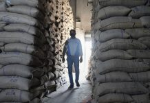 File photo   An employee inspects a godown of Food Corporation of India (FCI) where rice bags are being stored during a nationwide lockdown, in Srinagar   PTI