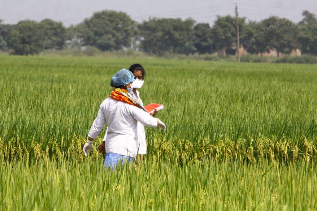 Nurses prepare ahead of the test drive near a field in Punjab's Sahnewal town | Praveen Jain | ThePrint