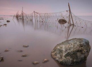 Fishing Net ( Representational Image) | Commons