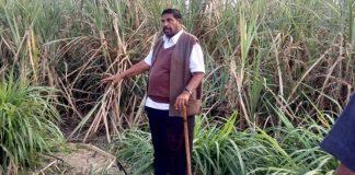 A file photo of Bharatiya Tribal Party chief Chhotubhai Vasava.   Photo: Twitter/Chhotu_Vasava